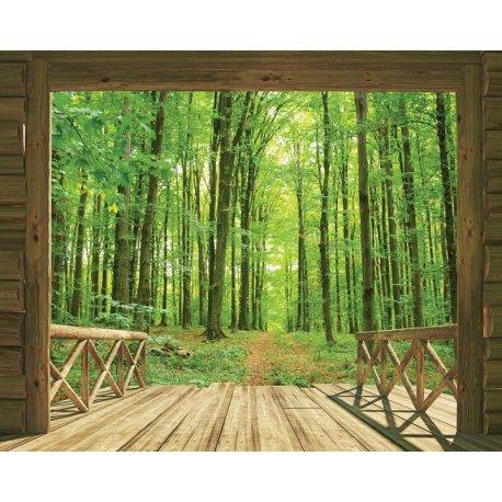Porta da Cabana do Bosque