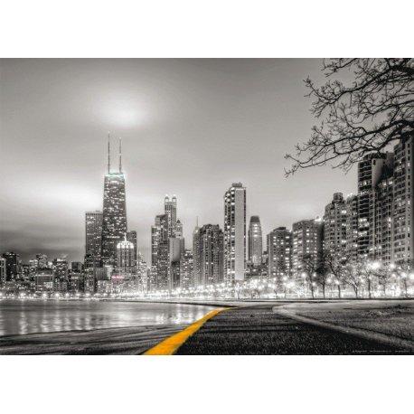 Noite de Chicago em Preto e Branco
