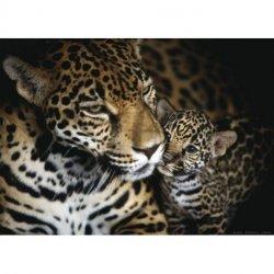 Mamã Leopardo e Cachorro