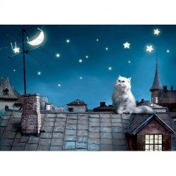 Gato no Telhado de Noite