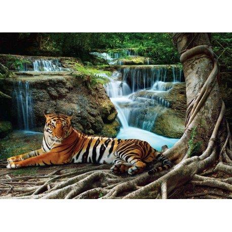 Tigre Deitado na Selva