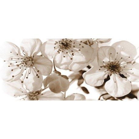 Delicadas Flores em Branco