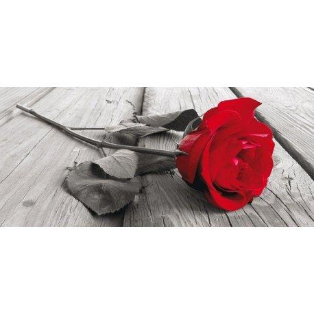 Romântica Rosa Vermelha Queda