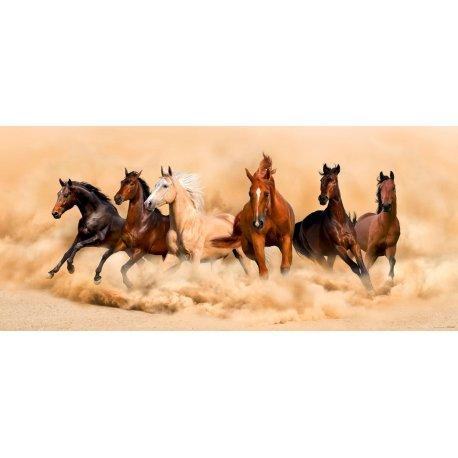 Cavalos a Corres sobre a Areia