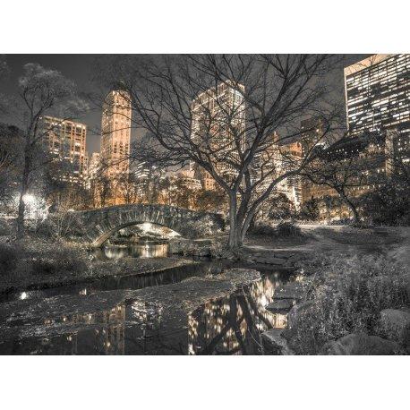 Central Park sobre Nova Iorque Iluminada