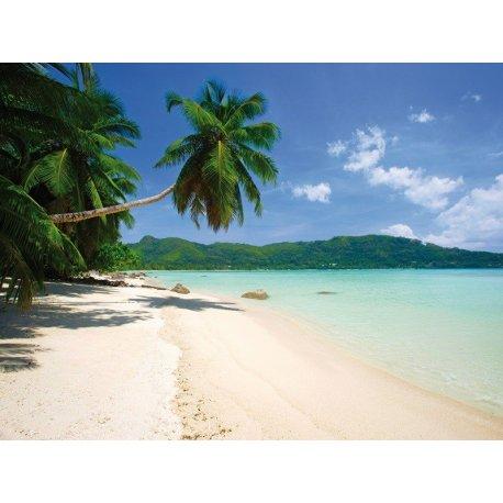 Praia de Areia Branca e Mar Turquesa