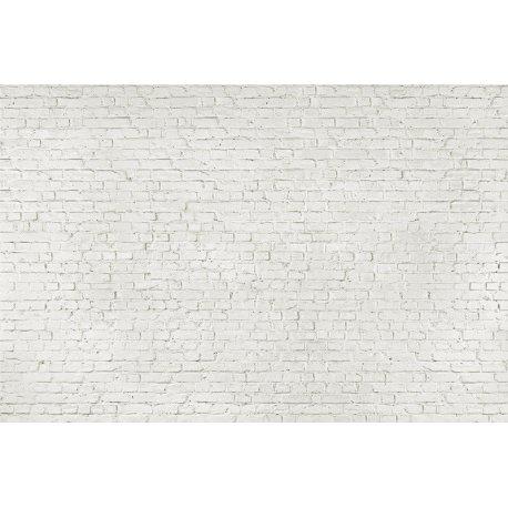 Muro de Tijolos em Branco