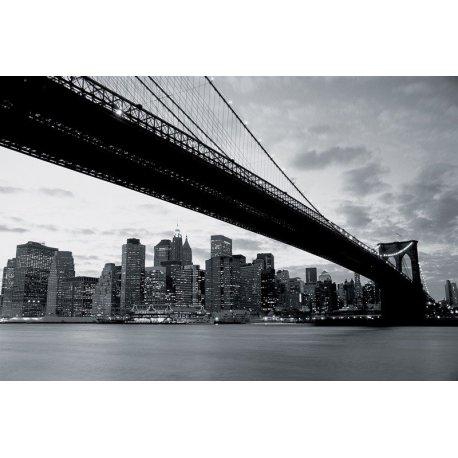 Sob a Ponte de Brooklyn em Preto e Branco
