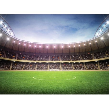 Campo de Futebol no Meio do Estadio