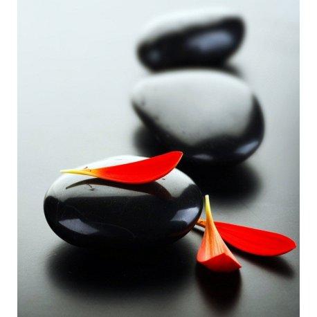 Rochas Zen em Preto com Pétalas