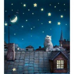 Noite Estrelada sobre o Telhado de Zinc