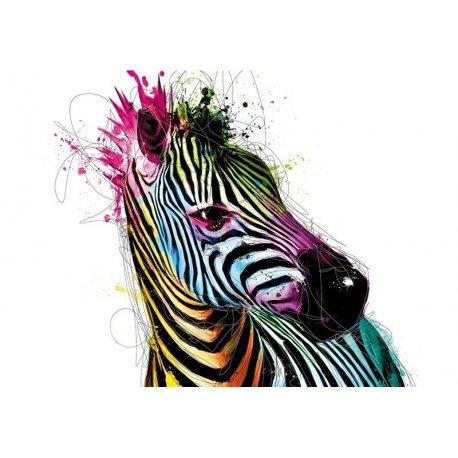 Foto Zebra Traços Coloridos