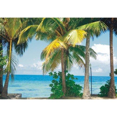 Vistas para o Mar desde o Paraíso