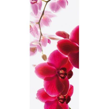 Ramo de Orquídeas e Lilas