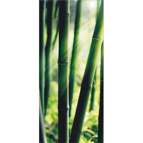 Verde Bambu Iluminado