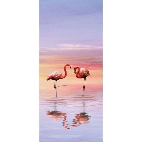 Flamingo na Água ao Pôr do Sol