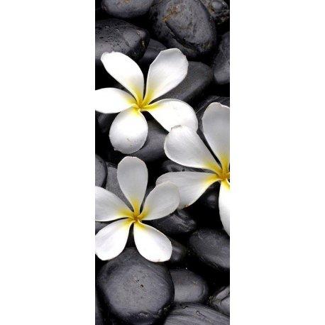 Pedras Pretas Zen e Flores Brancas