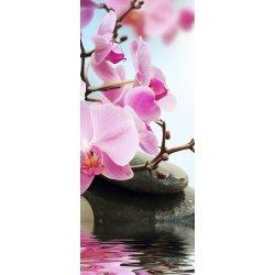 Orquídeas no Estanque Zen