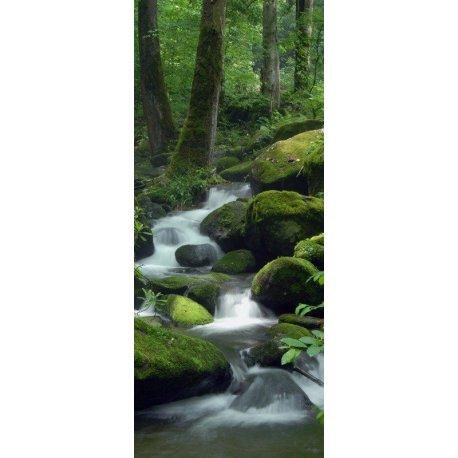 A Descida do Rio pelas Pedras