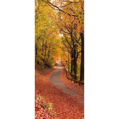 Caminho Coberto de Folhas Outonais