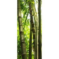 Troncos de Bambu Iluminados