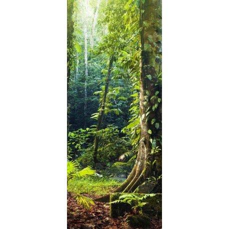 Entrada na Selva Misteriosa