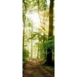 O Caminho do Bosque