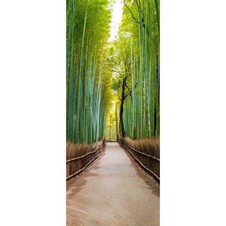 Passeio pelo Bosque Verde