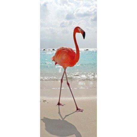Flamingo Caminhando na Praia