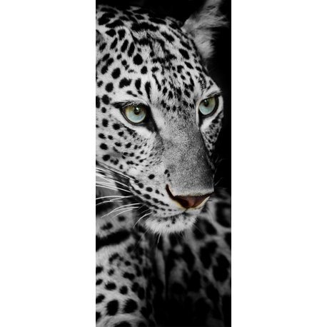 Rosto de Leopardo em Preto e Branco