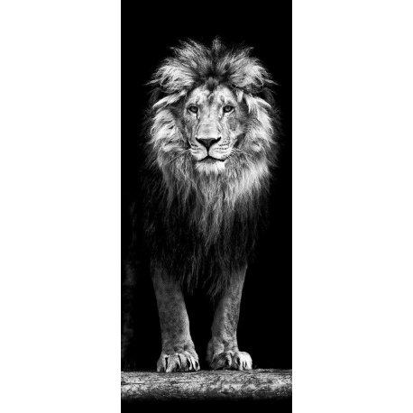 Leão Saindo das Sombras