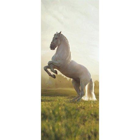 Cavalo Branco Rampante