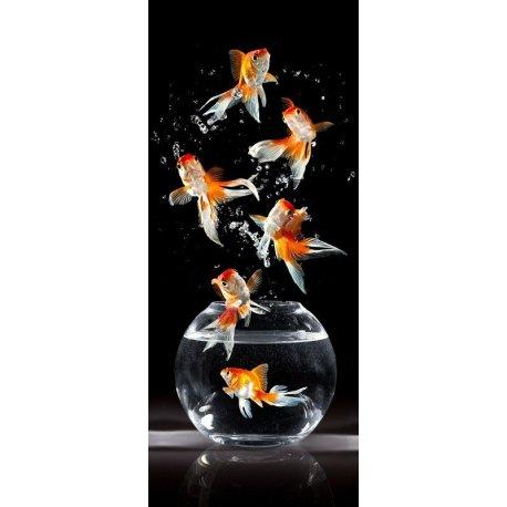 Peixe Saltando do Aquário