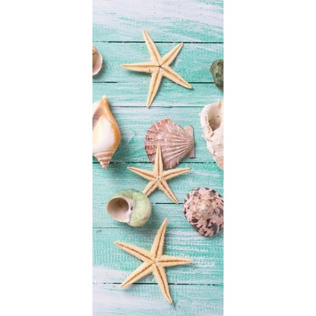 Composição Estrelas de Mar e Conchas