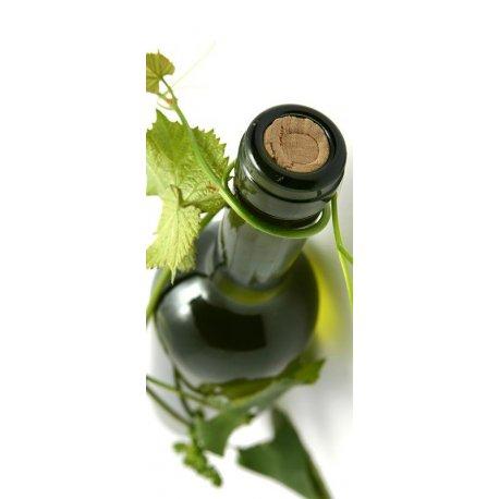 Garrafa de Vinho e Vinha