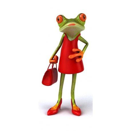 Sapo Elegante com Vestido Vermelho