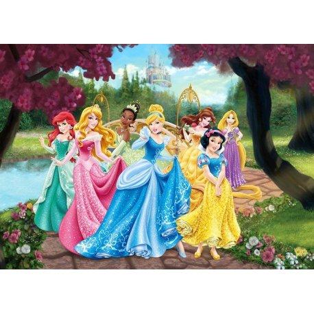 As Belas Princesas Disney de Conto