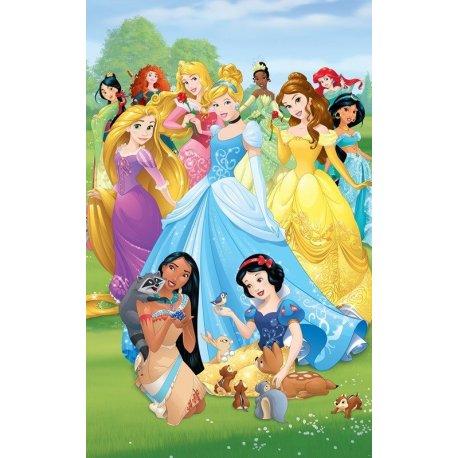 Todas as Princesas Disney Juntas