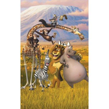 Amigos Madagáscar na África