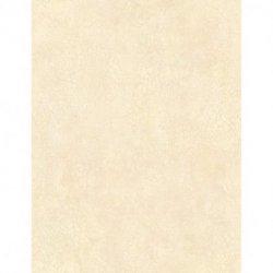 1004-7