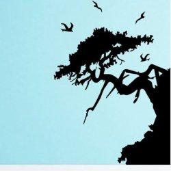 Árvore Nascido num Penhasco